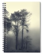 Trees And Fog At Castle Hill Spiral Notebook