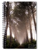 Trees And Mist Spiral Notebook
