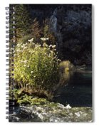 Trees And Plants At The Lakeside Spiral Notebook