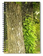 Trees At My Window Spiral Notebook