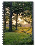 Trees At Sunrise Spiral Notebook