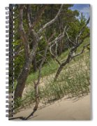Trees At The Edge Of A Dune At Silver Lake Spiral Notebook