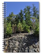 Trees Growing On The Edge Spiral Notebook