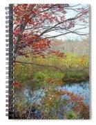 Trees In A Forest, Damariscotta Spiral Notebook