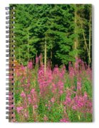 Trees In A Forest, Germany Spiral Notebook