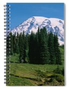 Trees In A Forest, Mt Rainier National Spiral Notebook