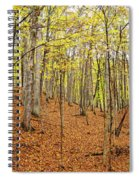Trees In A Forest, Stephen A. Forbes Spiral Notebook