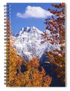 Trees In Autumn, Colorado, Usa Spiral Notebook