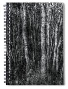 Trees In Black And White Spiral Notebook