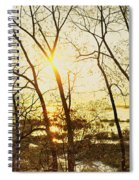 Trees In Marsh, Maine, Usa Spiral Notebook