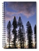 Trees In Silhouette Spiral Notebook
