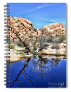 Trees In The Barker Dam Spiral Notebook