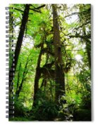 Trees In The Hoh National Rain Forest Spiral Notebook