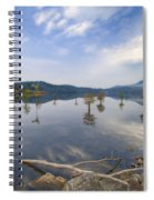 Trees In The Lake Spiral Notebook
