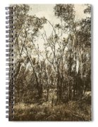 Trees Of Ashburn Spiral Notebook