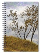 Trees Of The Beach Spiral Notebook