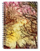 Trees Of The Four Seasons Spiral Notebook