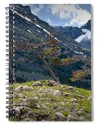 Trees On Top Of A Ridge At Glacier National Park Spiral Notebook
