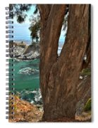 Trees Over Mcway Falls Spiral Notebook