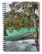 Trees Overhanging Cheakamus Lake Spiral Notebook