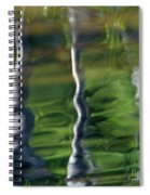 Trees Reflections On The River Spiral Notebook