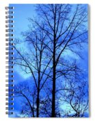 Trees So Tall In Winter Spiral Notebook