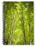 Trees Spiral Notebook