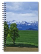 Trees With Mountains Spiral Notebook