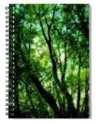 Treetops 1 Spiral Notebook