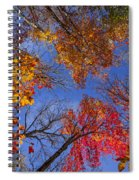 Treetops In Fall Forest Spiral Notebook