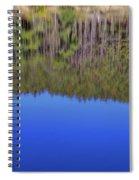 Treflections Spiral Notebook