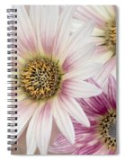 Tres Margaritas Spiral Notebook