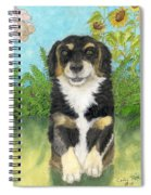 Tri Colored Dachsund Mix Dog Canine Pets Animal Art Spiral Notebook