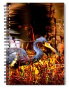 Tri Colored Heron - Reflection Spiral Notebook