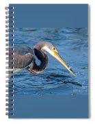 Tri Fish Splash Spiral Notebook