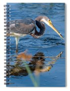 Tri With Fish Spiral Notebook