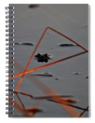 Triangle Drama Spiral Notebook
