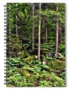 Triberg Forest Spiral Notebook
