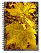 Tribute To Autumn Spiral Notebook