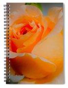 Tricia's Rose 8.6.14  Spiral Notebook