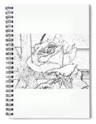 Tricia's Rose Dm  Spiral Notebook