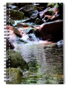 Trickle Down The Mountain Spiral Notebook