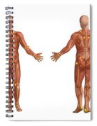 Trigger Points On The Human Body Spiral Notebook
