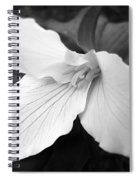 Trillium Flower In Black And White Spiral Notebook