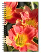 Trio Spiral Notebook