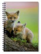 Trio Of Fox Kits Spiral Notebook