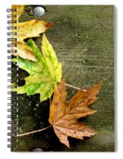 Trio Of Leaves Spiral Notebook