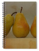 Trio Of Pears Spiral Notebook