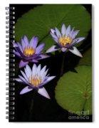 Trio Of Purple Water Lilies Spiral Notebook