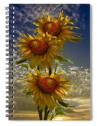 Trio Of Sunflowers Spiral Notebook